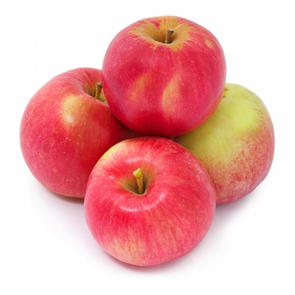 Frische Äpfel Elstar, 1kg