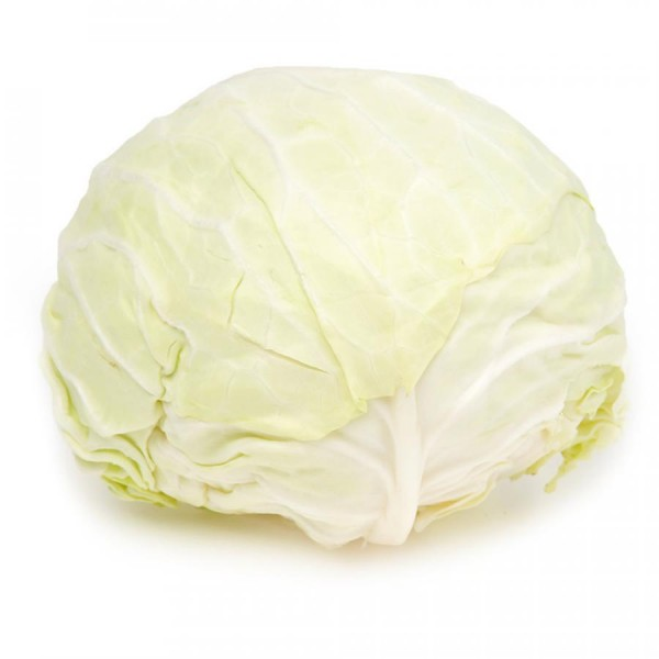 Frischer Weißkohl, 1 Stück, ca. 1,5kg