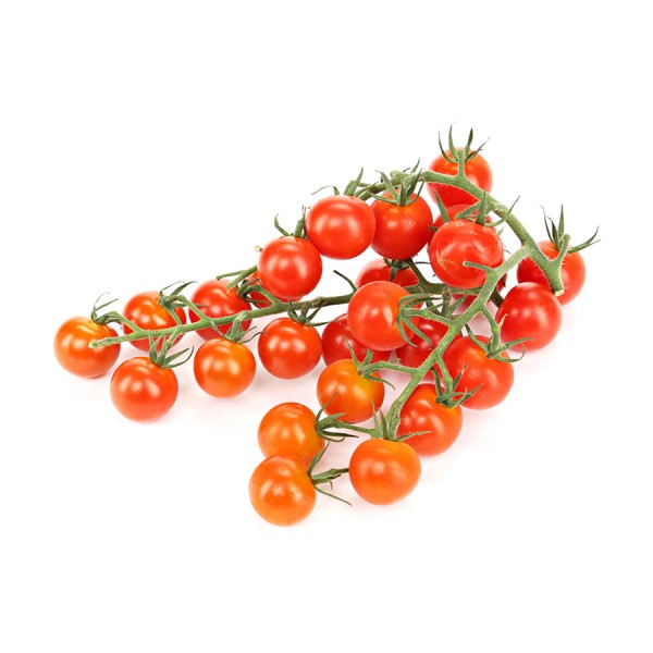 Frische Cherry-Rispentomaten 500g