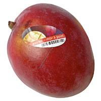 Frische Mango