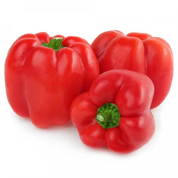 Frische Paprika Rot 3 Stück Packung