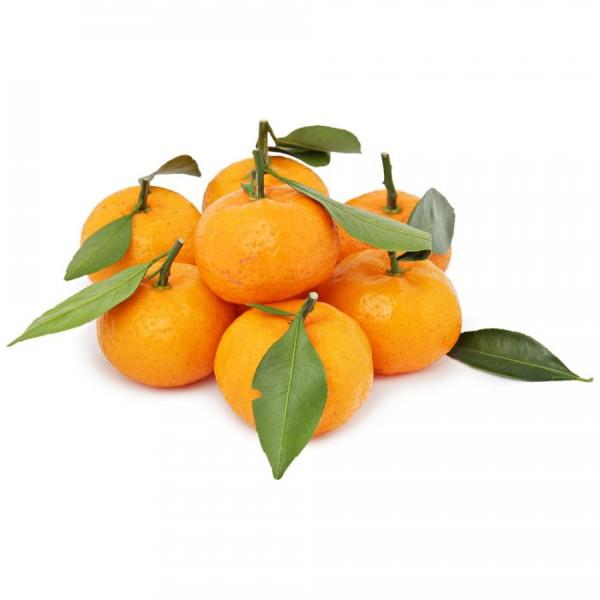 Frische Clementinen 1 kg Netz